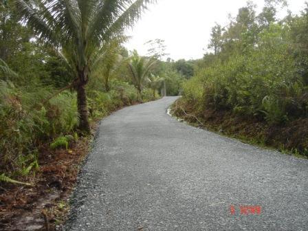 New Paved Road To The Kebun Main Gate